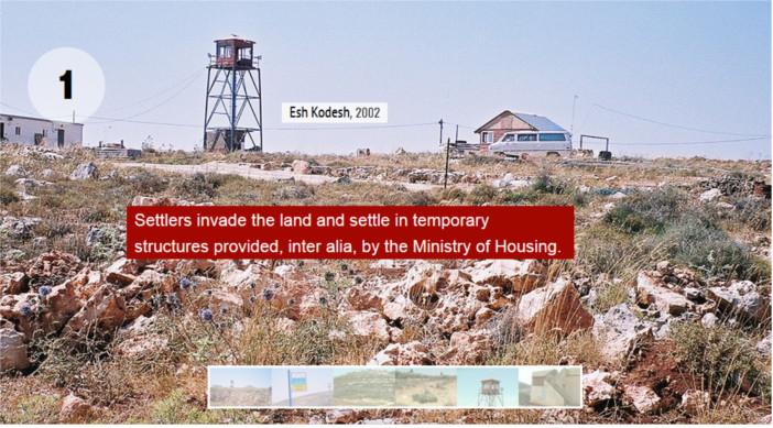 Wild Settlements