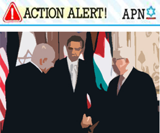 Action Alert Peace Talks 2 copy.jpg