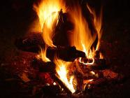 Bonfire 186x140.jpg