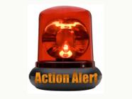 action_alert2.jpg